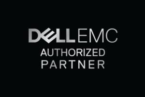 Dell Emc 300